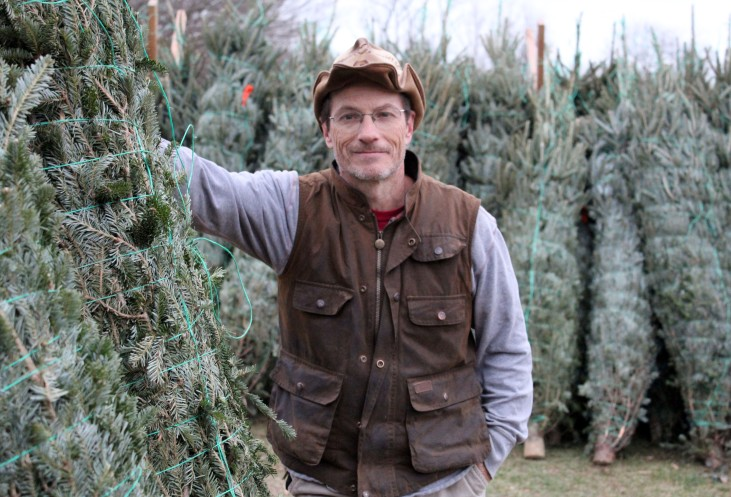Kevin Meehan, program director of Ambler Farm, stands beside trees to be sold at the annual Greens Sale.